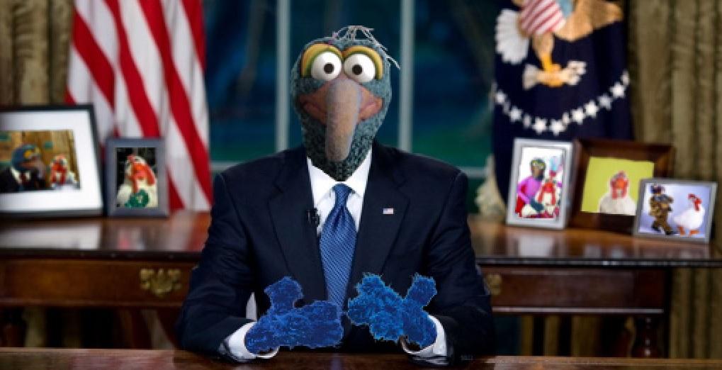 Muppet leadership