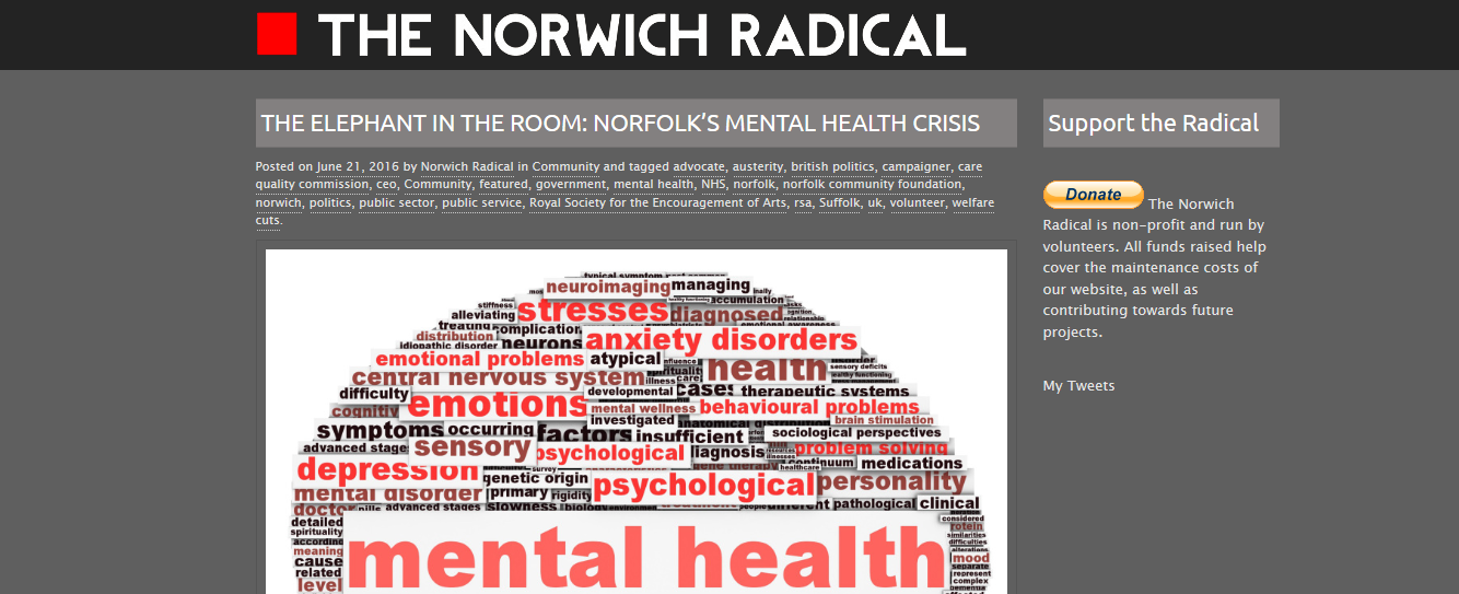 THE NORWICH RADICAL THE ELEPHANT IN THE ROOM NORFOLKS MENTAL HEALTH CRISIS