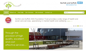 Sixth Day of Lent: Going without... £24,993 wasted on a new NSFT website
