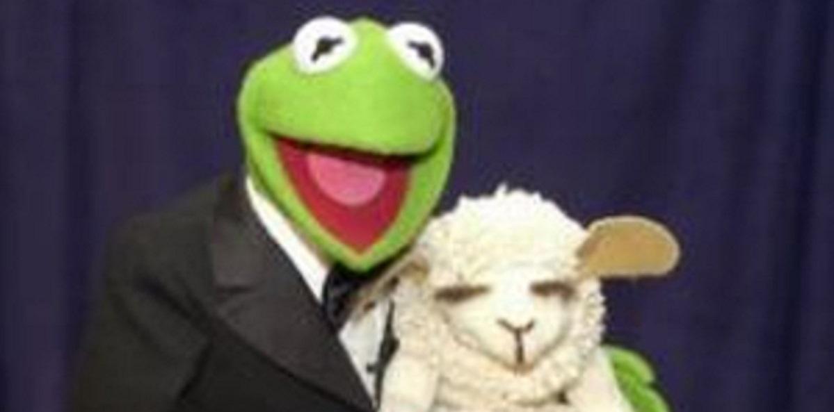 Muppet puppet Lamb Chop cropped