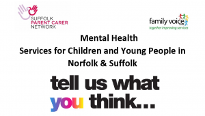 Survey: Parent/Carer experiences of Mental Health services for children & young people in Norfolk & Suffolk